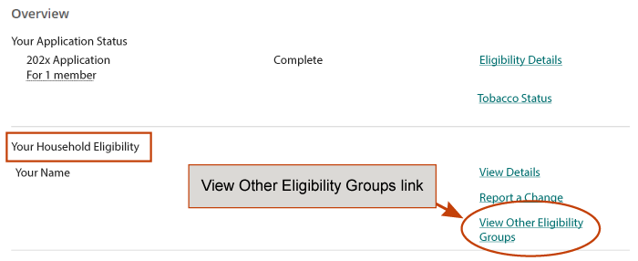 View Other Eligibility Groups link on the dashboard